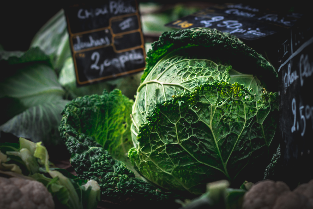 cabbage food photography