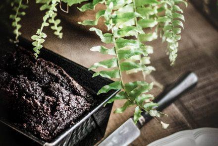 Ricetta perfetta per il Plumcake al cacao di Luigi Biasetto