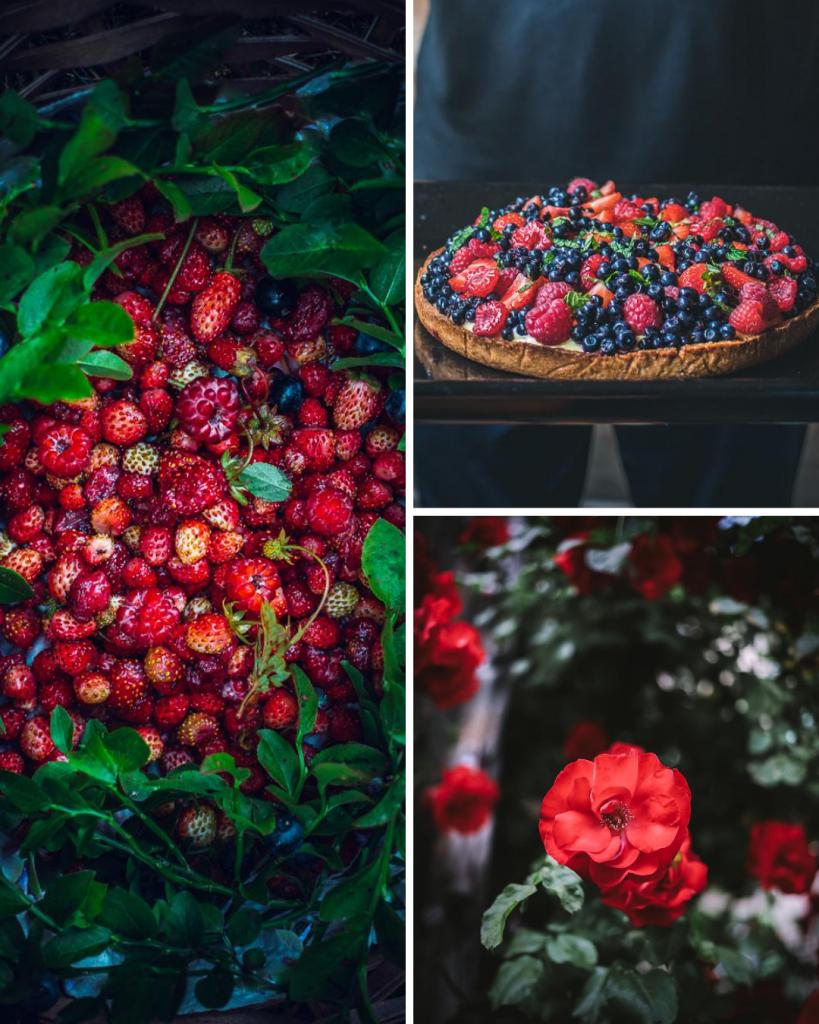 Frutti di bosco Val Zoldana