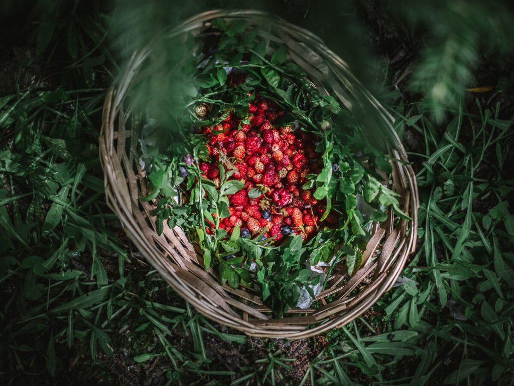 Cestino frutti di bosco e fragoline
